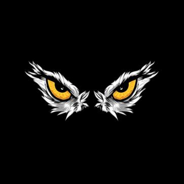 Eagle Eyes Isolated 09989