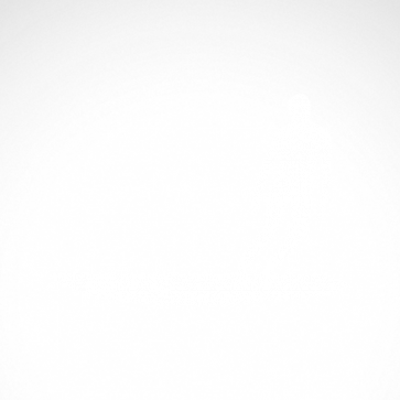 Surfer Figure 10220