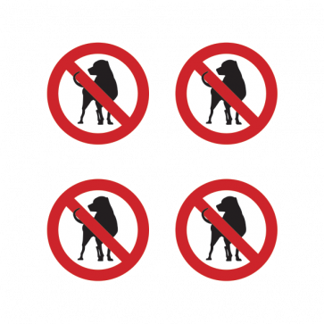 No Dogs Allowed 12124