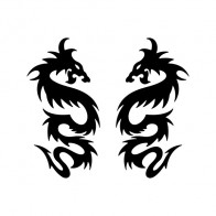 Pair Of Dragons 00504