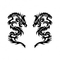 Pair Of Dragons 00507