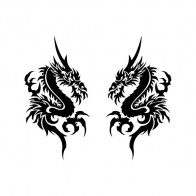 Pair Of Dragons 00533