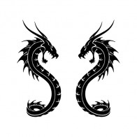 Pair Of Dragons 00536