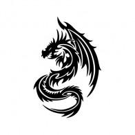 Dragon 00548
