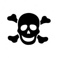 Crossbone Skull 00769