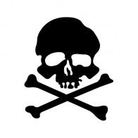 Crossbone Skull 00773