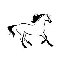 Horse Elegant Running 00774