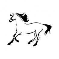 Horse Elegant Running 00775