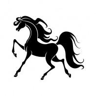 Fairy Fantasy Horse 00799