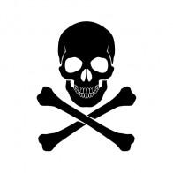 Crossbone Skull 00896
