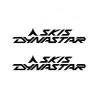 Skis Dynastar Logo 01313