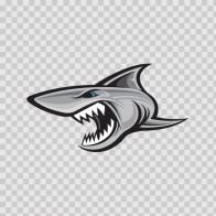 Shark Attack 01468