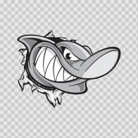 Shark Tearing 01479