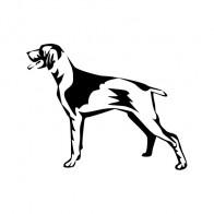 Hunting Dog 01746