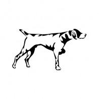 Hunting Dog 01749