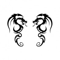 Pair Of Dragons 01764