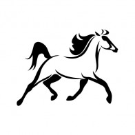 Horse Running 01765