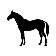 Elegant Horse Figure 01890