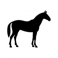 Elegant Horse Figure 01891