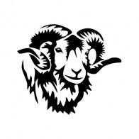 Ram Head 01897