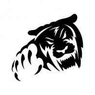 Tiger Attack 01907