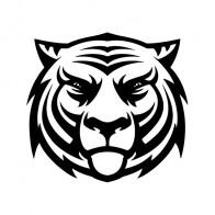 Tiger Head 01922