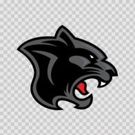 Black Panther Head 01942