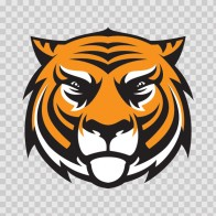 Tiger Head 01944