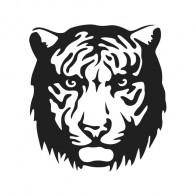 Tiger Head 01945