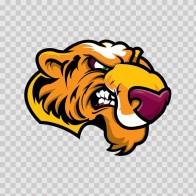 Tiger Head 01967