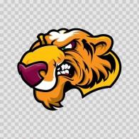 Tiger Head 01968