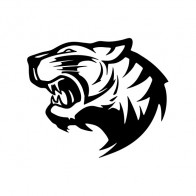 Tiger Wild Cat 01987