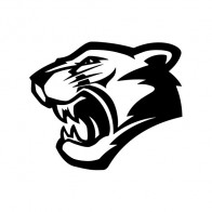 Panther Tiger Head 01988