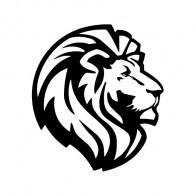 Lion Head 01991