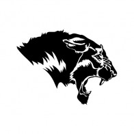Panther Head 01996