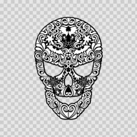 Ancient Skull 02408