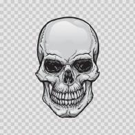 Original Skull 02425