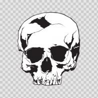 Cracked Skull 02438