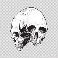 Combination Of Skulls 02450