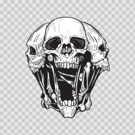 Combination Of Skulls 02451