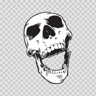 Skull Scream 02454