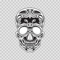 Ancient Skull 02455