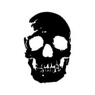 Crack Skull 02501