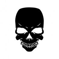 Skull 02506