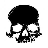 Cracked Skull 02522