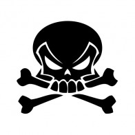 Skull 02530