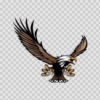 Bald Eagle 03286