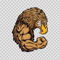 Bald Eagle Bodybuilder 03291