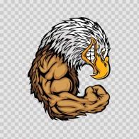 Bald Eagle Bodybuilder 03293