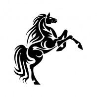 Tribal Horse 03378